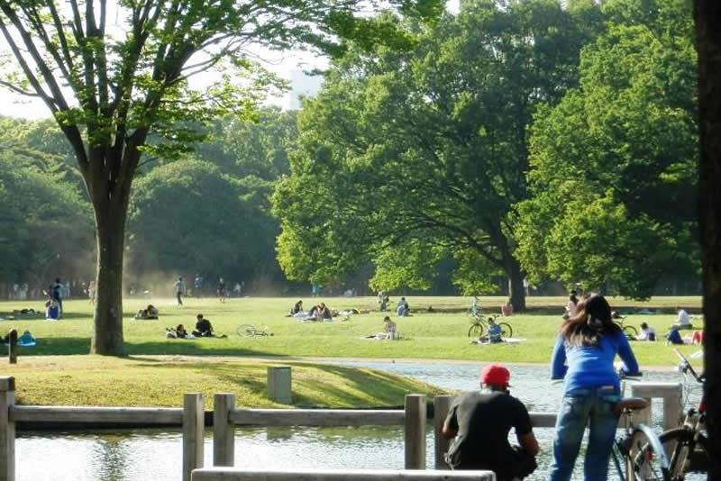 広大な自然と広い空のある街「代々木」メインイメージ